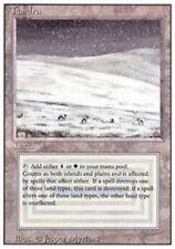 [1x] Tundra [x1] Revised Edition Near Mint, English -BFG- MTG Magic