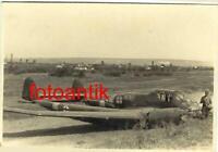 "Foto  2 WK Flugzeug Focke-Wulf Fw 189 ""Uhu"" Notlandung Kennung abgeschossen Top"