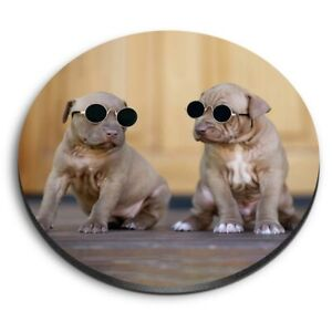 Round MDF Magnets - Cute Puppies in Sunglasses Dog  #24493