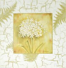 Kathryn WHITE SPRING Agapanthus poster immagine stampa d'arte 37x37cm-porto franco
