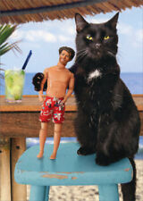 Cat And Doll Friends Avanti Humorous Funny Birthday Card