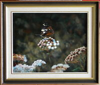 Tony Crago (1929-) Original Oil Painting Australian Red Admiral Butterfly