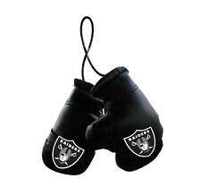 Oakland Raiders NFL Mini Boxing Gloves Rearview Mirror Auto Car Truck