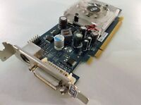 PNY Geforce 8400 GS 256MB DDR2 DVI Low Profile PCI-E Graphics Card