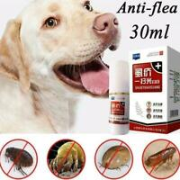 Flea and Tick Spot On Treatment For Kitten Cat or Spray Dog New Small Flea Z2H3