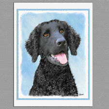 6 Curly-Coated Retriever Dog Blank Art Note Greeting Cards