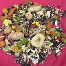 Squirrel Food Fruity Mix 100g HEALTHY Pinapple Papaya Nut Sunflower Pea Chipmunk