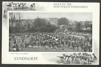 Postcard Lyndhurst Hampshire the New Forest Foxhounds early Hunt hunting hounds