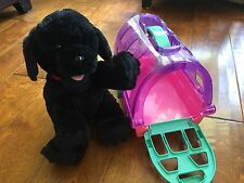 stuffed animal dog and toy pet carrying case, 11 inch x 10 tall,black dog,