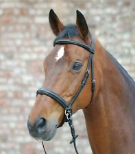STAR BITLESS BRIDLE SIDEPULL PADDED COMFORT WITH WEB REINS SIZE FULL-PONY