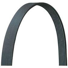 Serpentine Belt-VIN: G AUTOZONE/ DURALAST-DAYCO 433K5