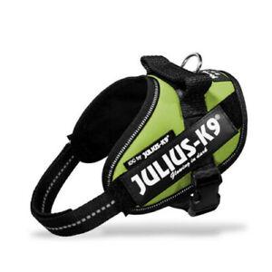 Julius K9 IDC Powerharness Dog Harness kiwi NEW