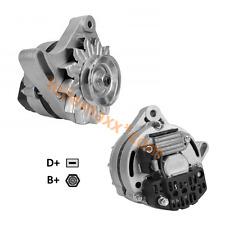 Lichtmaschine für BCS Goldoni Lombardini Steiner ... AAK4580 63320102 63321176