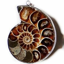 100% Natural Huge Ammonite Fossil Gems Vintage Solid Silver Necklace Pendant