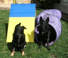 Dog Agility Mini A-Frame & 10' Tunnel Equipment Combo!