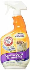 Arm & Hammer Pet Stain and Odor Eliminator, 32 Ounce (Pack of 2) 64.0 ounces