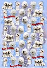 Bichon Frise Christmas Wrapping Paper By Starprint - Auto combined postage