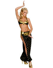 Playboy Harem Girl Sultry Belly Dancer Womens Sexy 2 Piece Halloween Costume M