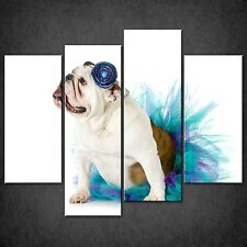 BULLDOG BLUE SET OF 4 CANVAS WALL ART PICTURES PRINTS LARGER SIZES AVAILABLE