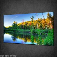 BEAVER POUND SUNSET TREES FOREST WALL ART CANVAS PRINT PICTURE READY TO HANG