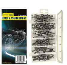 Simply Car Vehicle Body Trim Bumper Ford GM Chrysler Rivets Kit Assortment Pack