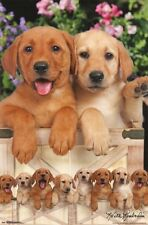 LAB PUPPIES POSTER - 22x34 - CUTE DOGS 16351