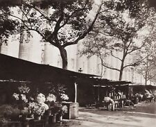 1890/1963 Vintage 11x14 FLOWERS Florist Market Paris France Art By EUGENE ATGET