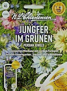 🌹🌺Blumensamen Jungfer im grünen Persian Jewels Blumen MHD Januar 2024🌺🌹