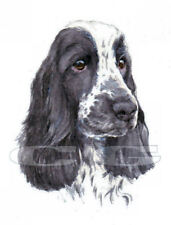 COCKER SPANIEL no12.  3 Blank Dog greeting cards by Christine Groves