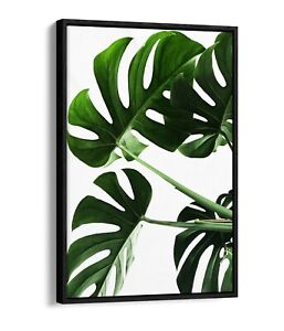 MONSTERA LEAF 5-DEEP FLOATER/FLOAT EFFECT FRAMED CANVAS WALL ART PRINT-WHITE