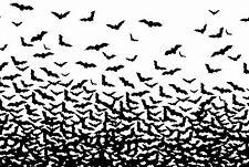Framed Print - Swarm of Black Vampire Bats (Picture Poster Flying Animal Art)