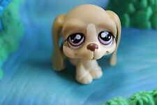 Littlest Pet Shop  Hund   1465