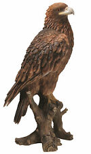 Vivid Arts - REAL LIFE BIRDS - Golden Eagle Bird Of Prey