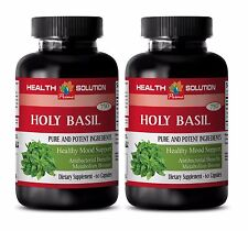 Basil plant -HOLY BASIL TULSI HERB ANTIOXIDANT- Weight-loss herbal capsules -2B