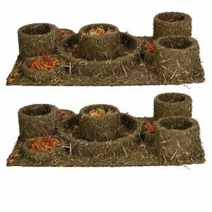 Small Animal Pet Treat Hamster Guinea Pig Naturals Hide'n'Treat Maze 28x18cm 2PK