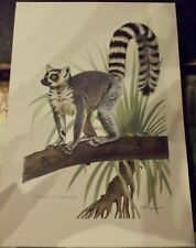N°23 Mammal Poster Lemur Catta Madagascar