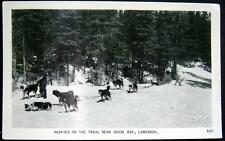 CANADA~1950's HUSKIES ON THE TRAIL NEAR GOOSE BAY ~ LABRADOR ~ PULLING SLED