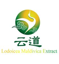 Free Shipping Supply Lodoicea Maldivica Extract/ double coconut 20:1 Powder 1KG