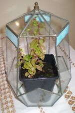 "VINTAGE GLASS 6 SIDED TERRARIUM WITH 3 STAINED GLASS  INSERTS 12"" HIGH"