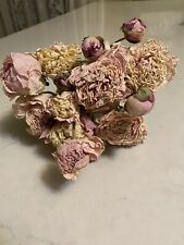 Peonies Lt. Pink Pink & Cream Peony Dried Flower Bunch Bouquet Bundle Last One!