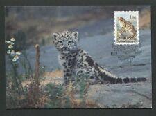 Finlandia Mk 1989 fauna Leopard maximum tarjeta Carte maximum card mc cm d8317