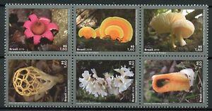 Brazil Mushrooms Stamps 2019 MNH Fungi Mushroom Nature 6v Block