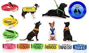 WARNING ALERT DOG COLLAR LEAD HARNESS COAT! AWARD WINNING PET PRODUCT! WHY WAIT?