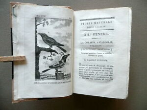 Storia Naturale di Buffon Tomo XIV Gli Uccelli Del Majno Piacenza 1813 Tavole