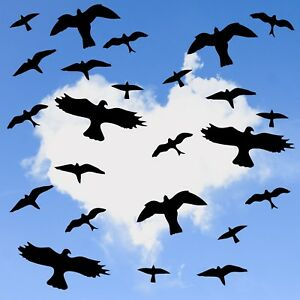 24 Bird Silhouette Warning Protection Stickers for Window Wall Glass B0001