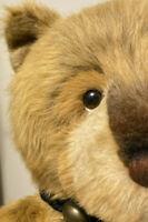"AMAZING Charlie Bears 46"" Caretaker bear Huge 5 Way Jointed bear LE 500 #137"