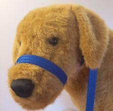 Figure of eight Airweb cushion  dog halter headcollar & Lead in one Royal