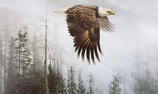 Vintage Art Robert Bateman Majesty on the Wing Eagle 1978 Flight Bird Prey Snow