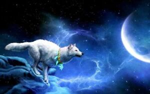 Best Gifts Home Wall Decor Wolf Starry Sky Moon Oil Painting Printed On Canvas
