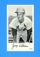 1966 ST LOUIS CARDINALS TEAM ISSUED POSTCARD JIMMY WILLIAMS  NM-MT
